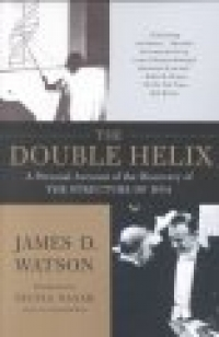 Double Helix - Product Image